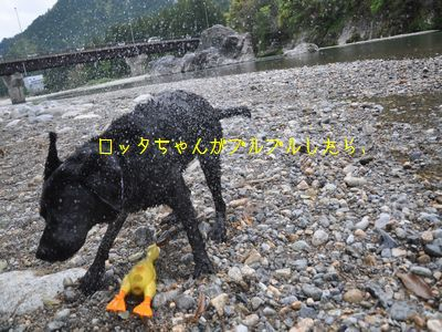 bb2011 05 07_6770