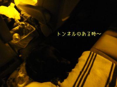 b2011 05 08_7568