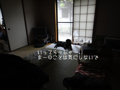 b2011 05 29_8601