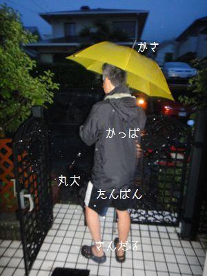 b2011 06 11_7413