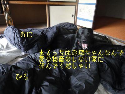 b20110711-DSC08179.jpg