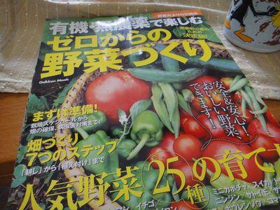 b20110809-DSC09597.jpg