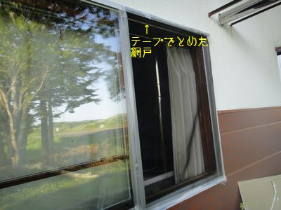 b20110811-DSC00017.jpg