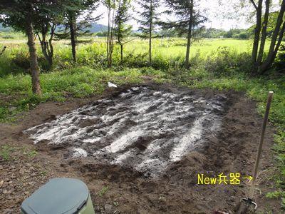 bb20110731-DSC09555.jpg