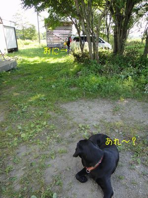 bb20110801-DSC09580.jpg