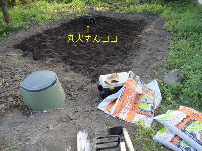 bb20110802-DSC09605.jpg