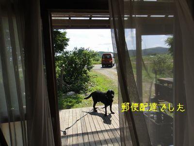bb20110805-DSC09744.jpg