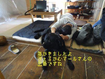 bb20110805-DSC09758.jpg
