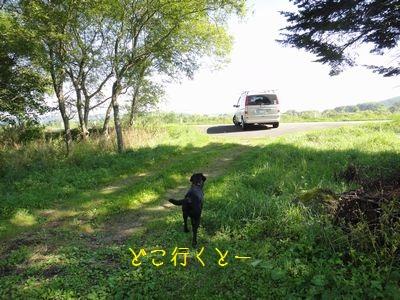 bb20110829-DSC00217.jpg