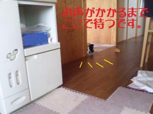 110501_001mt.jpg