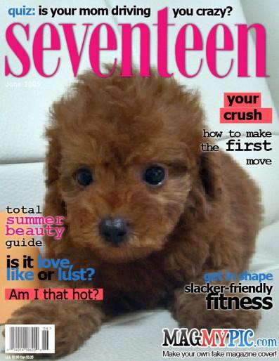 SEVENTEEN_med_08.jpg
