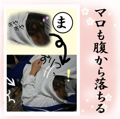 karuta-ma.jpg
