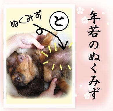 karuta-to.jpg