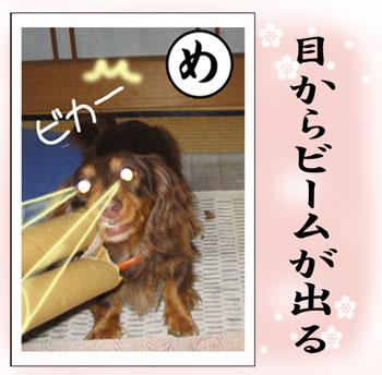 karutamenew_20080123180714.jpg
