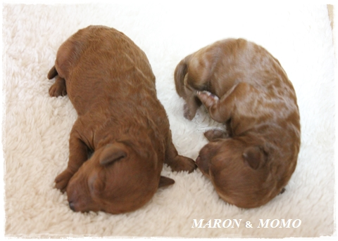 出産5日後-2