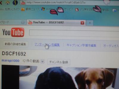 DSCF1884_convert_20110308134747.jpg