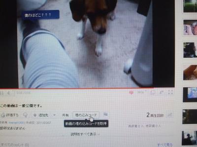 DSCF1899_convert_20110308135825.jpg