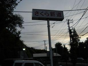 王子飛鳥山アジサイ (49)