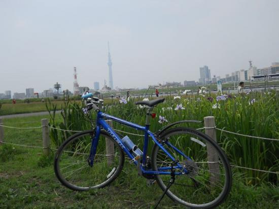 サイクリング7-3 (18)