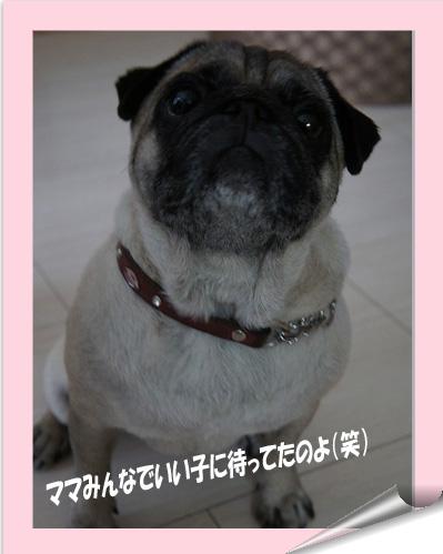はないいこ_edited-1