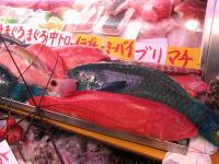 2007.2.15沖縄6