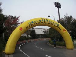 第31回江東シーサイドマラソン