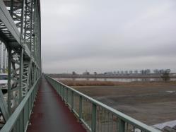 途中、伊勢大橋を渡ります