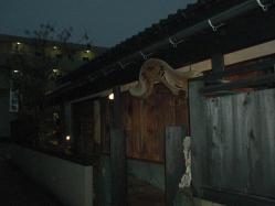 会場は八田の京料理京加茂さんです