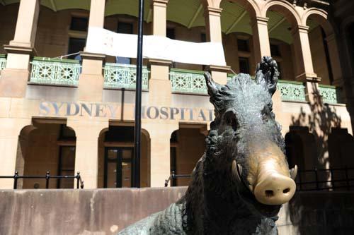 シドニー病院