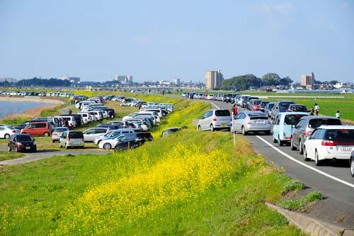 駐車場渋滞