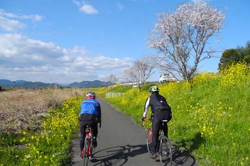 今川サイクリングロード