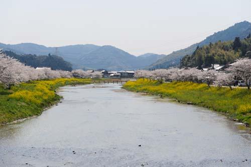 犀川の河川敷