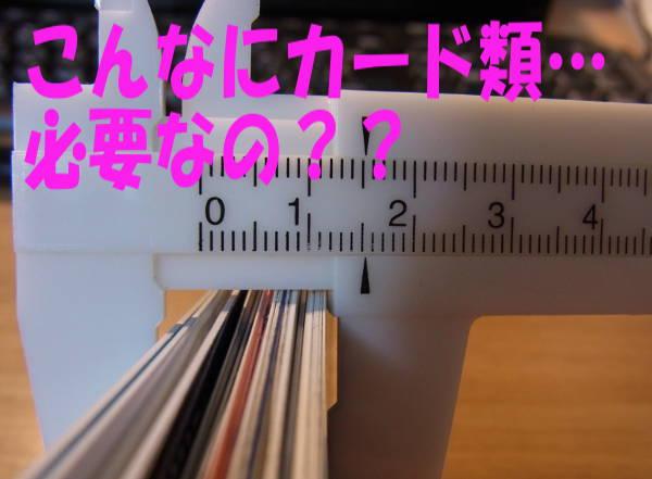 k-dohituyou.jpg