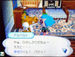 070811butumori4.jpg