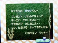071010butumori14.jpg