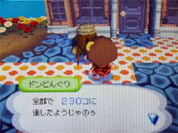 071017butumori1.jpg
