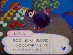 071024butumori1.jpg