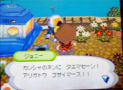 071025butumori34.jpg