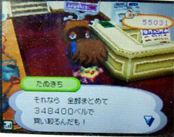 071109cocoamura1.jpg