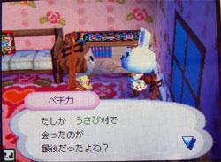 071109cocoamura6.jpg