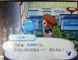 071111butumori2.jpg