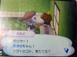 071111butumori6.jpg