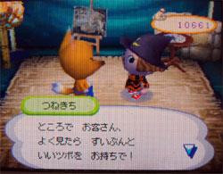 071113butumori1.jpg