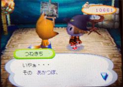 071113butumori2.jpg