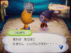 071113butumori3.jpg