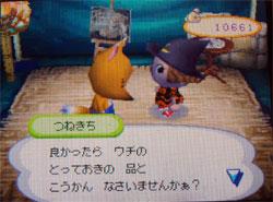 071113butumori4.jpg
