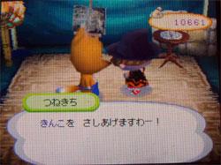 071113butumori7.jpg