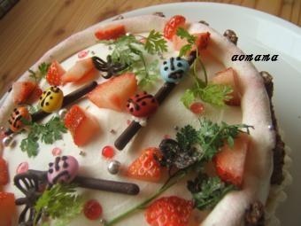 0302 野原のケーキアップ