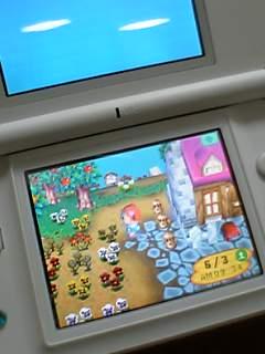 20060603102411