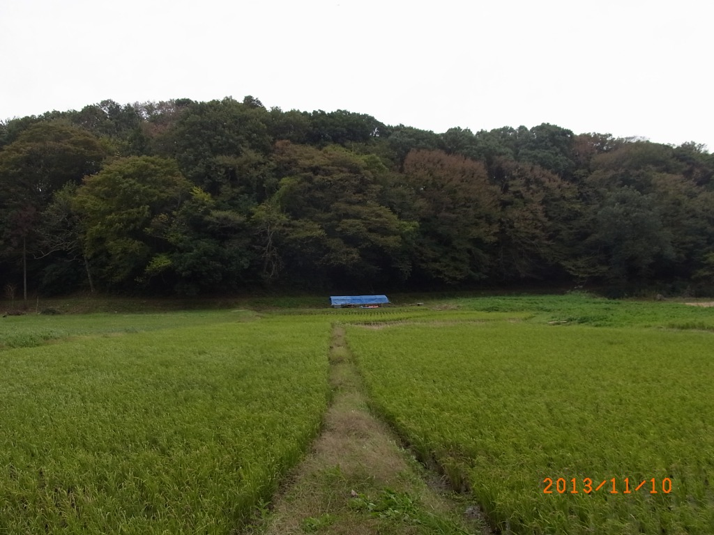 s_R0016521.jpg